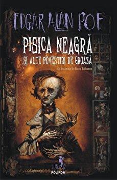 Pisica neagra si alte povestiri de groaza/Edgar Allan Poe