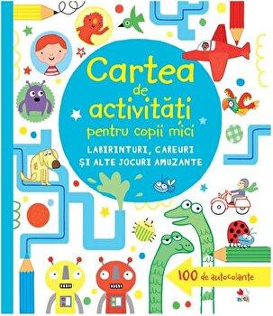 Carte de activitati pentru copii mici. Labirinturi, careuri si alte jocuri amuzante/*** de la Litera
