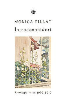 Intredeschideri/Monica Pillat de la Baroque Books & Arts
