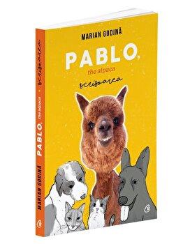 Pablo, the alpaca. Scrisoarea/Marian Godina de la Curtea veche