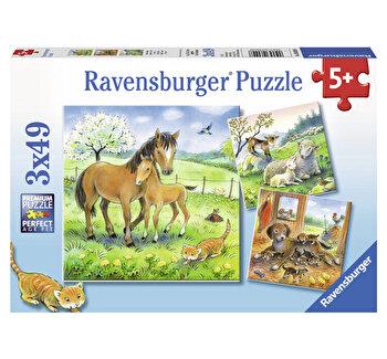Puzzle Animale si pui, 3×49 piese de la Ravensburger