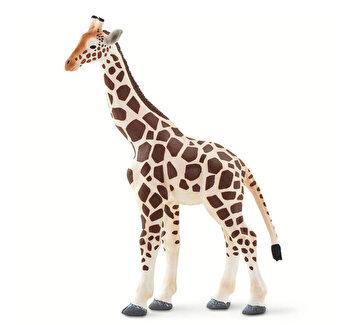 Safari, Figurina Girafa de la Safari