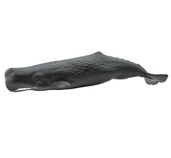 Safari, Figurina Balena Casalot de la Safari