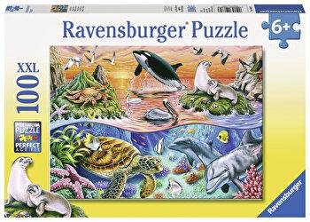 Puzzle Minunatul ocean, 100 piese de la Ravensburger