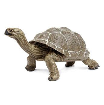 Safari, Figurina Broasca Testoasa Terestra de la Safari