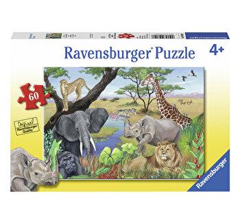 Puzzle Animale Safari, 60 piese de la Ravensburger