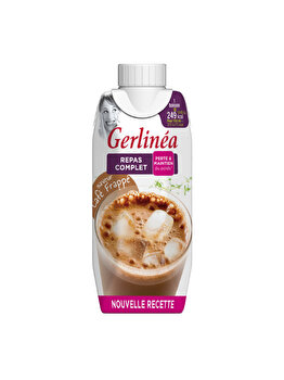 GERLINEA SHAKE FRAPPE 330ml de la Gerlinea