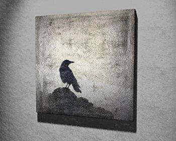 Tablou decorativ, Vega, Canvas 100 procente, lemn 100 procente, 45 x 45 cm, 265VGA1082, Multicolor