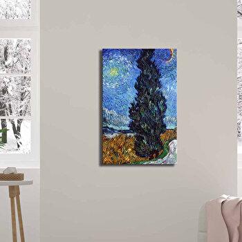 Tablou decorativ, Canvart, Canvas, 45 x 70 cm, lemn 100 procente, 249CVT1391, Multicolor