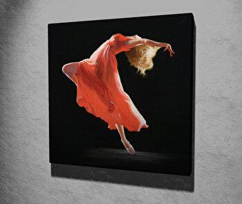 Tablou decorativ, Vega, Canvas 100 procente, lemn 100 procente, 45 x 45 cm, 265VGA1218, Multicolor
