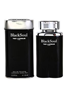Apa de toaleta Ted Lapidus Black Soul, 100 ml, pentru barbati de la Ted Lapidus