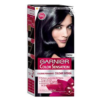 Vopsea de par permanenta cu amoniac Garnier Color Sensation cu pigmenti intensi 1.0 Negru Onix de la Garnier Color Sensation