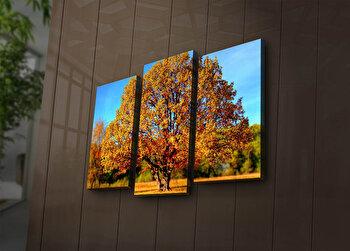 Tablou decorativ canvas cu leduri (3 Piese) Ledda, 254LED3244, Multicolor de la Ledda