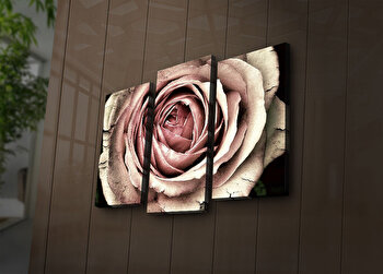 Tablou decorativ canvas cu leduri (3 Piese) Ledda, 254LED3246, Multicolor de la Ledda