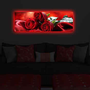 Tablou decorativ canvas cu leduri Shining, 239SHN3255, Multicolor de la Shining