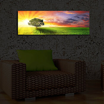 Tablou decorativ canvas cu leduriShining, 239SHN3209, Multicolor de la Shining