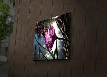 Tablou decorativ canvas cu leduriLedda, 254LED1279, Multicolor