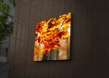 Tablou decorativ canvas cu leduriLedda, 254LED1280, Multicolor