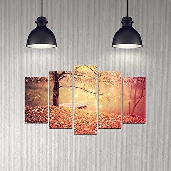 Tablou decorativ 5 Piese, Melody, 232MLD2904, Multicolor de la Melody