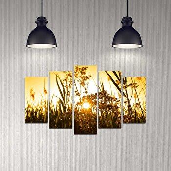 Tablou decorativ 5 Piese, Melody, 232MLD2906, Multicolor de la Melody