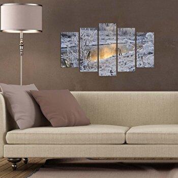Tablou decorativ (5 Piese) Pure, 250PUR2926, Multicolor