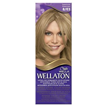 Vopsea par Wellaton 803 Toamna aurie de la Wellaton