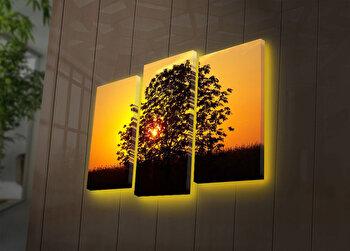 Tablou iluminat Ledda, 3 Piese, 254LED4276, Multicolor de la Ledda
