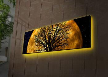 Tablou pe panza iluminat Ledda, 254LED3269, 30 x 90 cm, Multicolor de la Ledda
