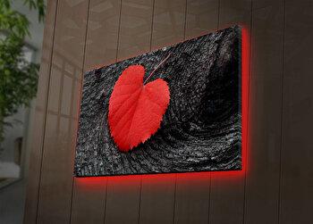 Tablou pe panza iluminat Ledda, 254LED3276, Multicolor de la Ledda