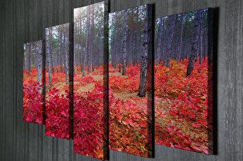 Tablou decorativ pe panza Symphony, 762SYM1204, Multicolor
