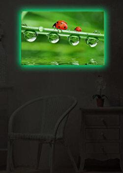Tablou iluminat Shining, 239SHN1295, Verde