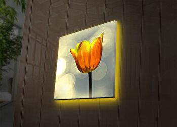 Tablou pe panza iluminat Ledda, 254LED4231, Multicolor