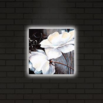 Tablou pe panza iluminat Shining, 239SHN4252, Multicolor de la Shining