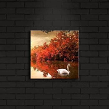 Tablou iluminat Shining, 239SHN4209, Multicolor