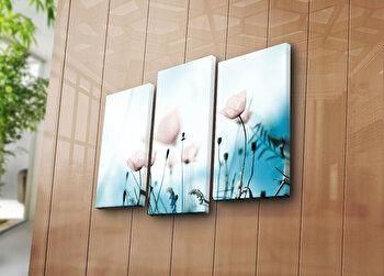 Tablou decorativ Bonanza,3 Piese, 242BNZ3206, Multicolor