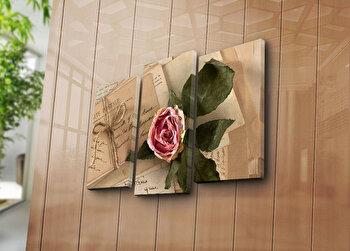 Tablou decorativ pe panza Bonanza, 3 Piese, 242BNZ3269, Multicolor de la Bonanza