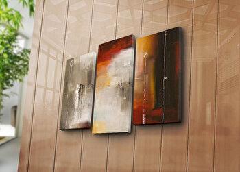 Tablou decorativ pe panza Canvart, 3 Piese, 249CVT1223, Multicolor de la Canvart