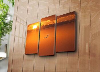 Tablou decorativ pe panza Sightly, 3 Piese, 252SGH1251, Multicolor de la Sightly