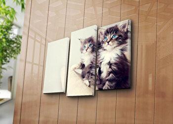 Tablou decorativ pe panza Sightly, 3 Piese, 252SGH1270, Multicolor