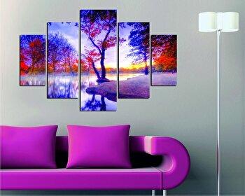 Tablou decorativ multicanvas Destiny, 5 Piese, Peisaj, 247DST1942, Multicolor de la Destiny