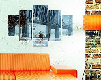 Tablou decorativ multicanvas Destiny, 5 Piese, Retro, 247DST1901, Multicolor de la Destiny