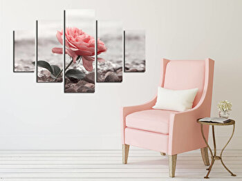Tablou decorativ multicanvas Destiny, 5 Piese, Trandafir, 247DST2937, Multicolor de la Destiny