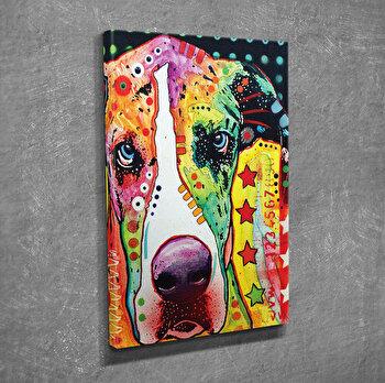 Tablou decorativ pe panza Symphony, 762SYM3210, Multicolor