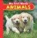 *** - Animal Photo Board -