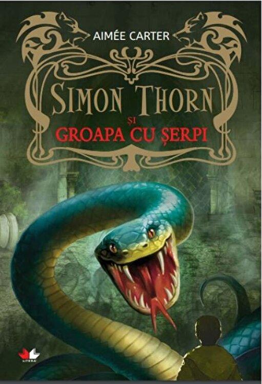 Coperta Carte Simon Thorn si groapa cu serpi