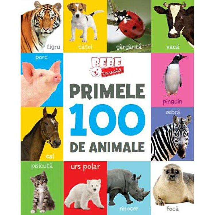 Coperta Carte Bebe Invata. Primele 100 de Animale.