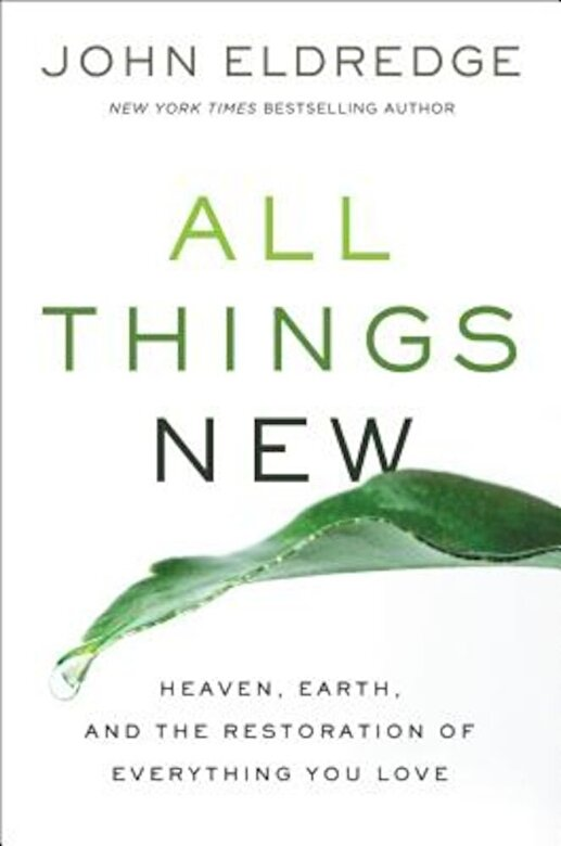 John Eldredge - All Things New: Heaven, Earth, and the Restoration of Everything You Love, Hardcover -