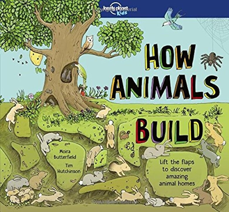 Lonely Planet - How Animals Build, Hardcover -