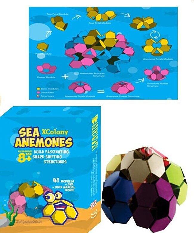XColony - Joc Anemone marine + DVD -
