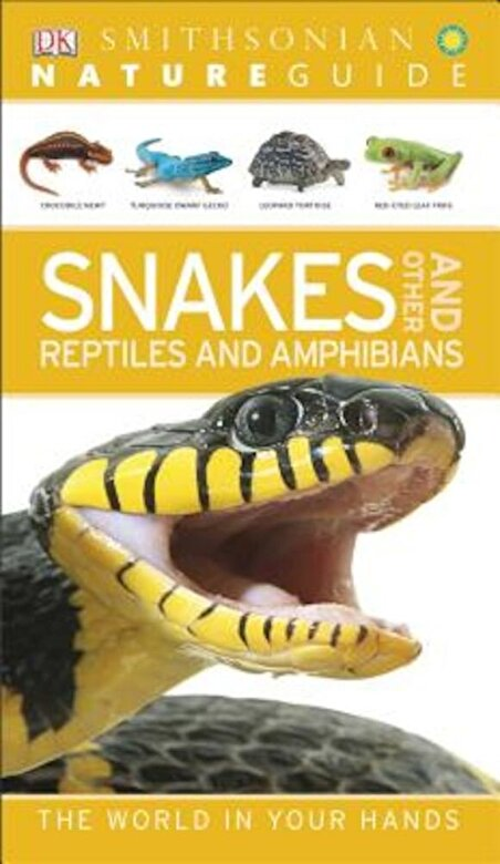 DK - Snakes and Other Reptiles and Amphibians, Paperback -